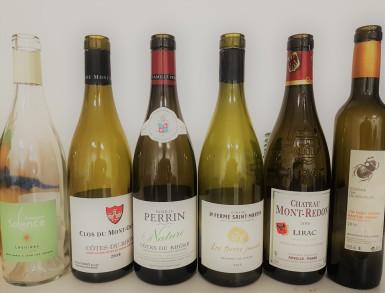 Wine Tasting Dégustation de vin