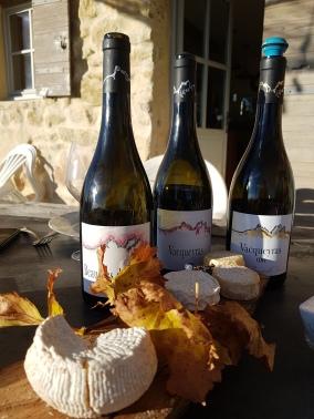 Vins et fromages au domaine Demoiselle Suzette