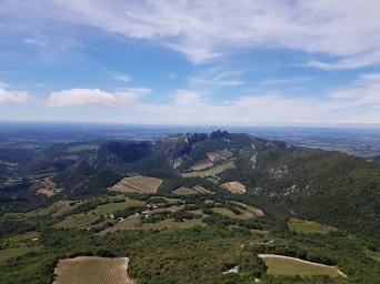 Dégustation avec vue panoramique Dentelles de Montmirail