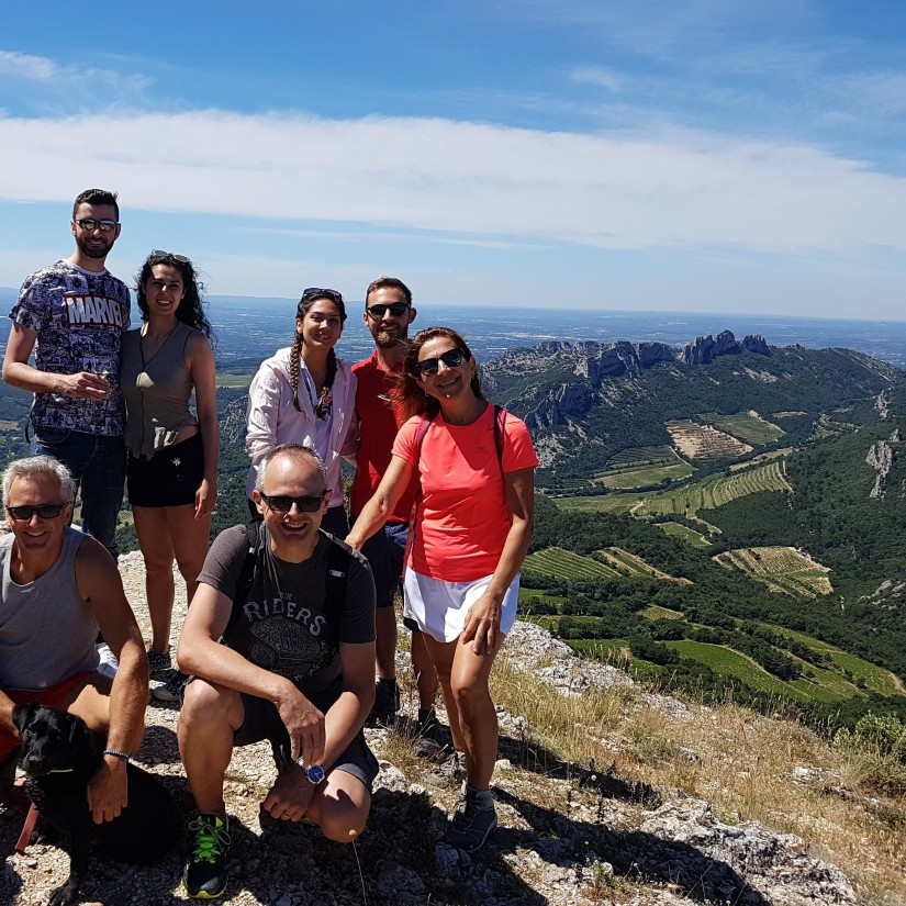 Visite de cave Balade dans le vignoble Expérience oenologique Expérience Vin en Provence Expérience vin en Provence Découverte du vin avec un guide Oenotourisme Activité et loisir autour du vin